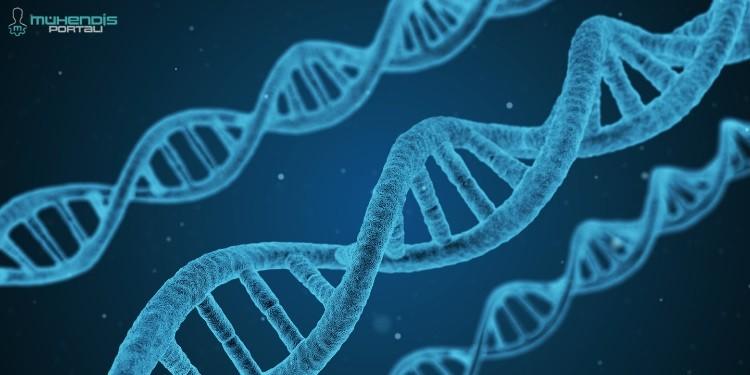 DNA Görseli