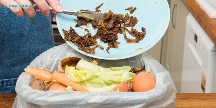Gıda Atıkları Görsel